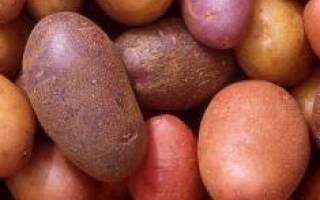 К чему снится большая картошка