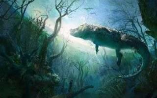 Сон крокодил в воде