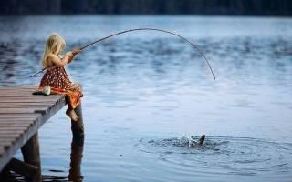 Сон ловить рыбу сетью