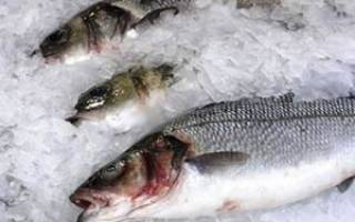 К чему снится мороженная рыба женщине