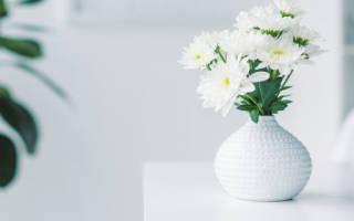 Сонник букет белых цветов