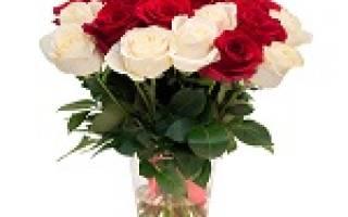 Сонник букет роз