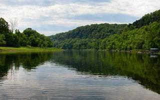 Сонник мутная вода в реке