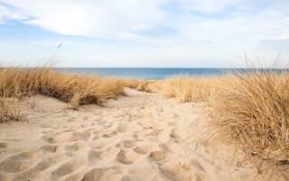 Сонник миллера песок