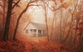 К чему снится рухнувший дом