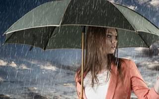 Сонник зонтики много