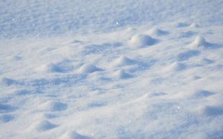 Видеть во сне снег белый