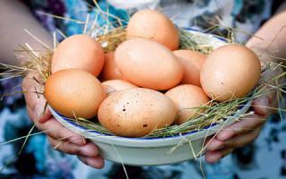 К чему снятся куриные яйца во сне