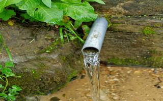 Сонник родник с чистой водой