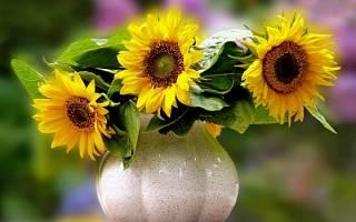 К чему снится большой букет цветов