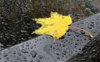 Дождь во сне сонник