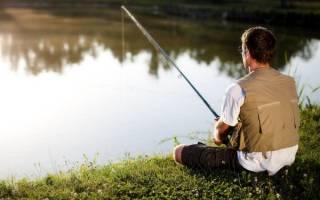 К чему снится рыба парню
