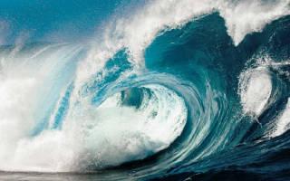 Сонник большая волна