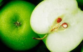 Сонник яблоки зеленые большие