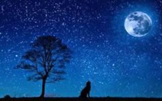 Видеть во сне звездное небо