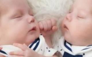 Родить во сне близнецов мальчиков