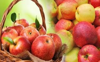 К чему снятся яблоки на деревьях женщине