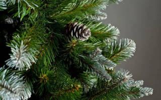 Сонник новогодняя елка с игрушками в доме