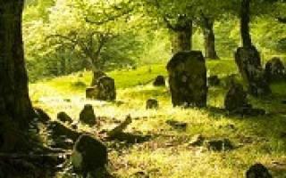 Сонник быть на кладбище
