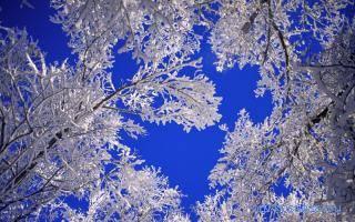 Сонник к чему снится зима