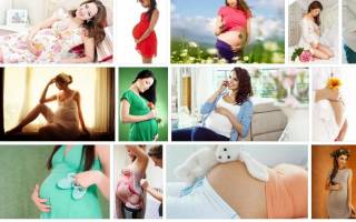 Беременная мама во сне