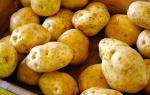 К чему снится собирать картошку во сне