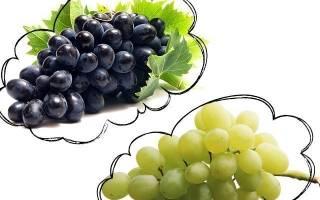 Сонник виноград видеть