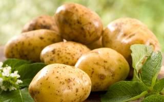 Сонник картошка сырая видеть