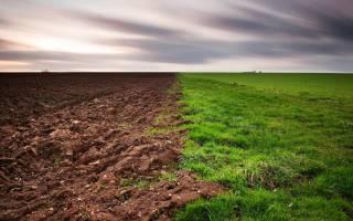 Копать землю во сне что означает