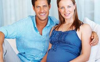 Сон жена беременна