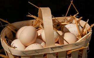 Видеть во сне яйца куриные