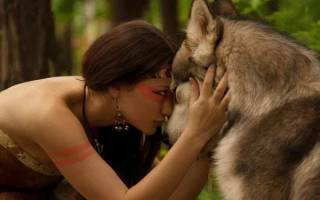 К чему снится черный волк