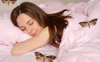 К чему снится моль во сне